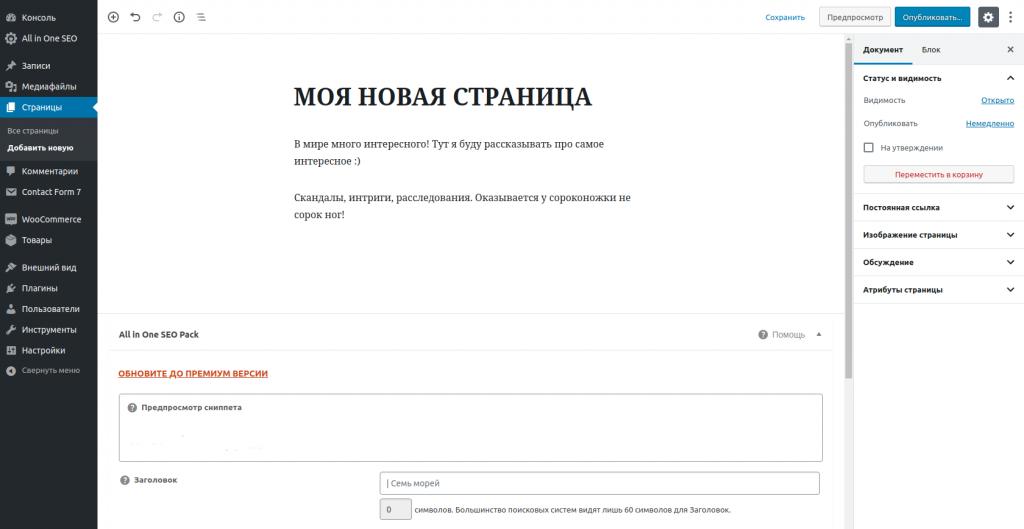 Скрин с админки Вордпресса